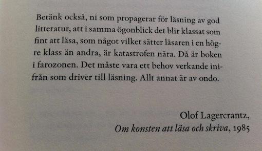 sonja åkesson självbiografi
